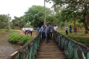 paulo ponte