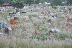 cemiterio parque